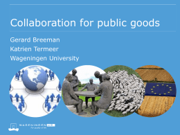 Theoretical notions on cooperation for the provision of public goods