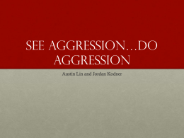 See Aggression*do aggression