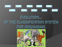 Classification PPT