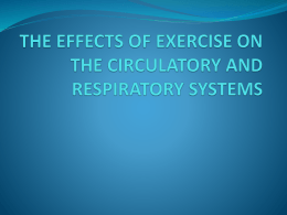the effects of exercise on the circulatory and respiratory systems