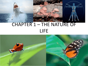 CHAPTER 1 * THE NATURE OF LIFE