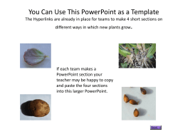 You Can Use This PowerPoint as a Template