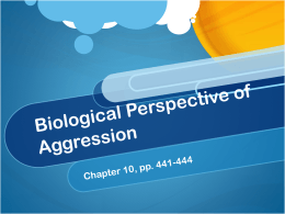 Biological Perspective of Aggression - ITL