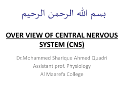 13OVERVIEW OF CNS-II