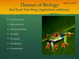 Themes of Biology