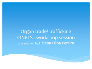 workshop session presentation by Helena Filipa Pereira