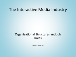 The Interactive Media Industry – Organisational