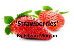 Strawberries Intro`