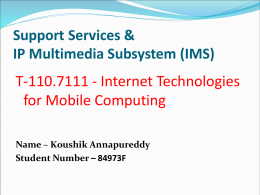 Support Services IP Multimedia Subsystem