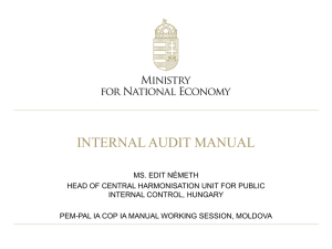 Hungary - Internal Audit Manual -_NE201106