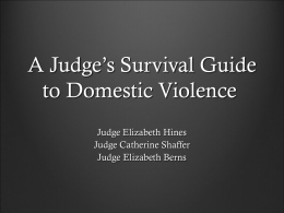 A Judge`s Survival Guide to Domestic Violence