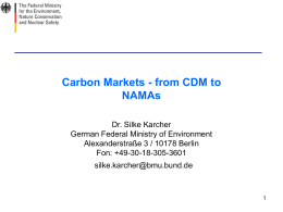 """Carbon Markets - from CDM to NAMAs"", Dr. Silke Karcher"