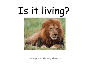 Is it living? - Kindergarten Kindergarten