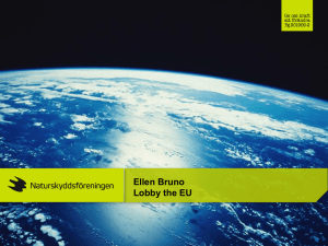 How to lobby the EU institutions