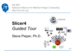 2011_Summer-Slicer4 - National Alliance for Medical Image