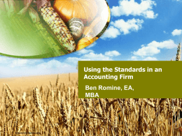 Using the `Standards` in an Accounting Firm — Ben Romine