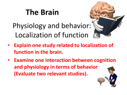 The Brain - AP Psychology Community