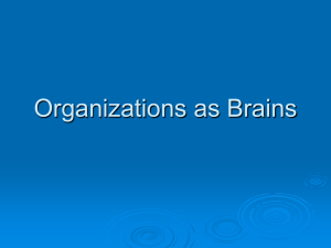 Chapter 4 Organizations as Brains
