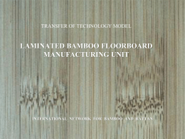 Bamboo Flooring PPT - International Network for Bamboo and Rattan