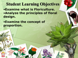 How is proportion achieved in floral design?