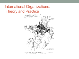 International Organizations: Theory and Practice