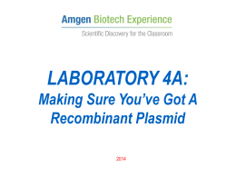 abe_lab_4a_confirmation_of_para-r_digest