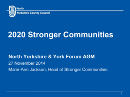 The County Council`s Stronger Communities Programme