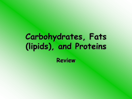 Carbohydrates_Fats_lipids_and_Proteins_review