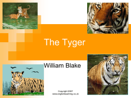 what does the tyger by william blake mean