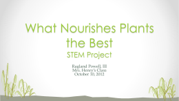 What Nourishes Plants the Best STEM Project