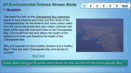 AP Environmental Science Stream Study