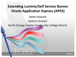 Extending Luminis/SSB with Oracle APEX