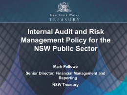 Mark Pellowe - NSW Public Sector Audit & Risk Practitioner Network