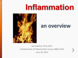 slides on inflammation
