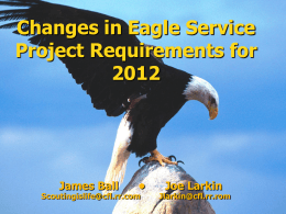 Changes in Eagle Service Project