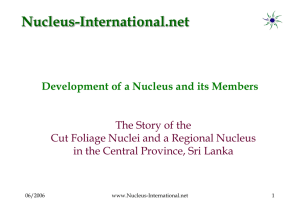 E21 - The Story of the Cut Foliage Nuclei and a Regional Nucleus in