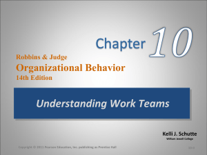 Robbins & Judge Organizational Behavior 13e