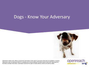 Dogs - Know Your Adversary - FSE2