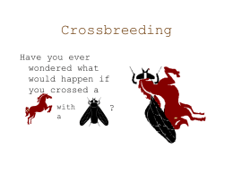 Cross_Breeding