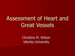 Assessment of Heart and Vessels