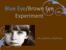 Blue Eye/Brown Eye Experiment