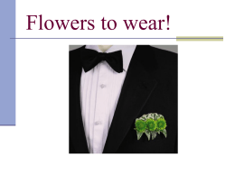 Flowers to Wear Presentation