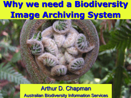Chapman-Image Archiving