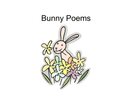 Bunny Poems