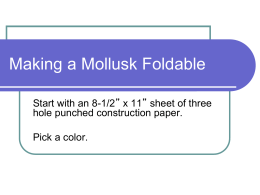 Making a Mollusk Foldable