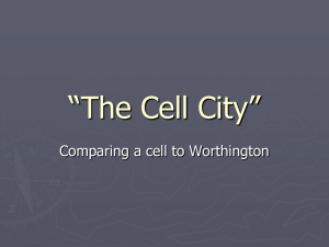 """The Cell City"""