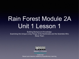 Rain-forest-Module-2A-Unit-1-Lesson-1