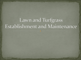 Lawn and Turfgrass Establishment and Maintenance