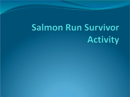 Salmon Run Activity