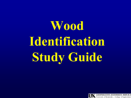 Wood Products ID #2 - Montgomery County Schools